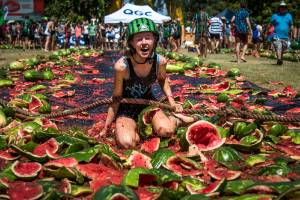 According to organisers, attendees ate more than 800 melons and smashed another 1100.