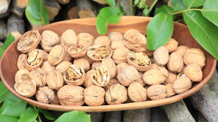 How to grow walnuts in New Zealand | Stuff co nz