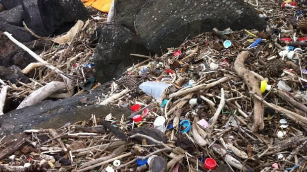 Plastic rubbish around Mangere Bridge, Auckland.