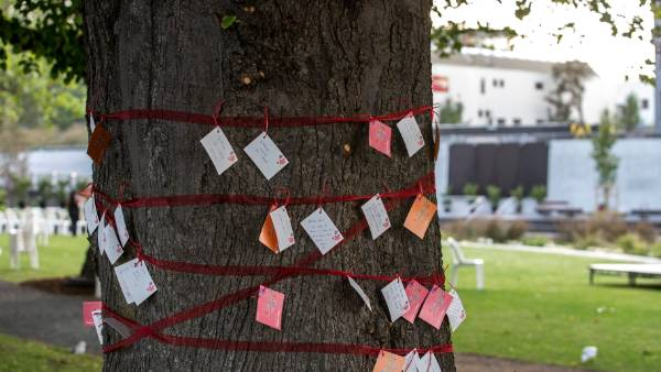 Notes written to earthquake victim by their loved ones strung around a tree by the memorial.