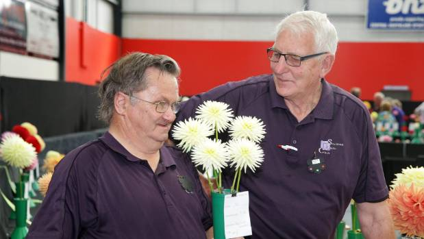 Grahame Evans, with his winning entry, and dahlia expert Walter Jack at the South Island National Dahlia Show in Winton ...