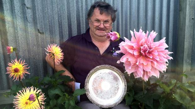 Grahame Evans with the tray he received for winning the five blooms in a vase class at the South Island National Dahlia ...