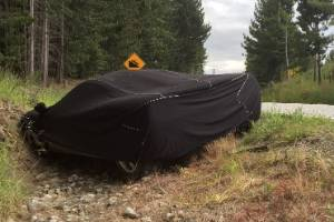 In December, 2016, a McLaren F1 crashed on the Queenstown-Glenorchy Rd in the South Island.