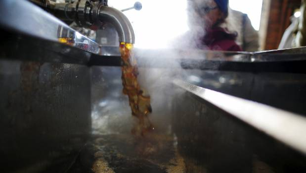 It Takes Approximately 40 Gallons 150 Litres Of Sap To Make One Gallon