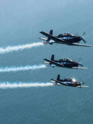 The Air Force Black Falcons will fly over Wellington at lunchtime on Friday.
