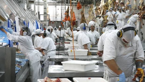 More robotics are being introduced at meat plants to increase safety and processing efficiency.