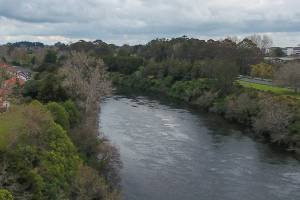There have been 40 submissions received by the Waikato Regional Council on its Healthy Rivers plan change with the ...