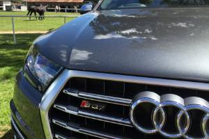 The Audi SQ7 parked at Woodville racecourse.