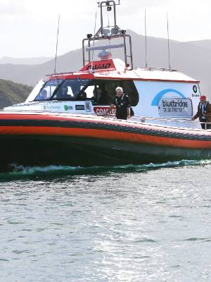 The Marlborough Coastguard assisted in the search for a missing diver in the Marlborough Sounds on Saturday.