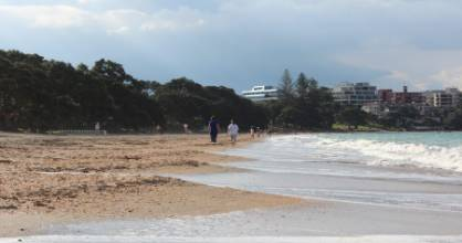 A discovery of an animal skin was followed days later by a discovery of a carcass along the foreshore of popular ...