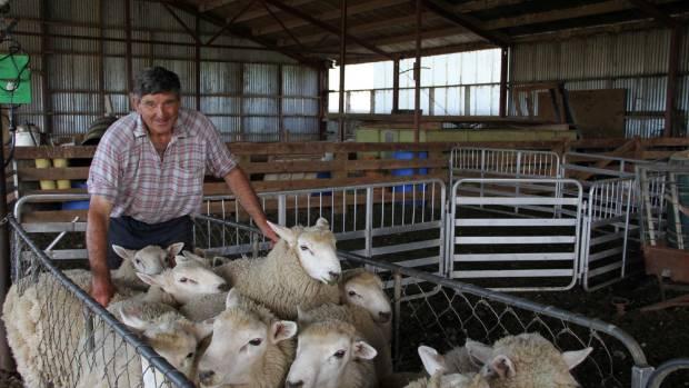Ida Valley farmer Robert Gardyne with some of the ram lambs he grazes at East Limehills.