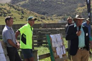 Silver Fern Farms national agribusiness manager Greg McSkimming, Mount Linton general manager Ceri Lewis and Bryan ...