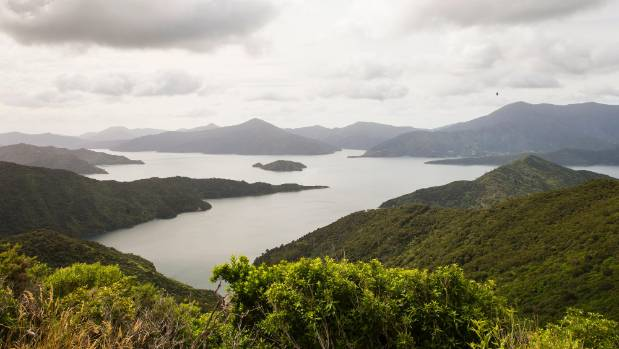 Broadband, Cellphone Scheme Proposed For Marlborough Sounds