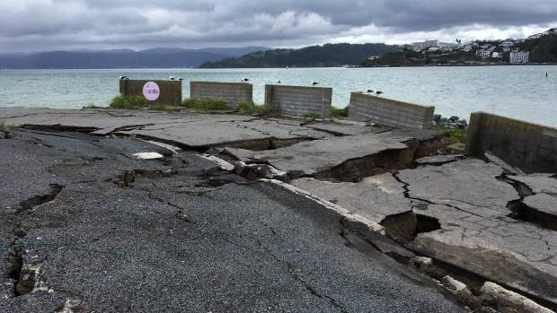Greater Wellington Regional Council will not be getting a dividend from quake-damaged CentrePort this year, partly ...