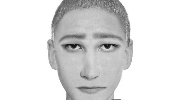 Police hope this sketch of the suspect will help track down the man who broke into a woman's bedroom in Wellington.