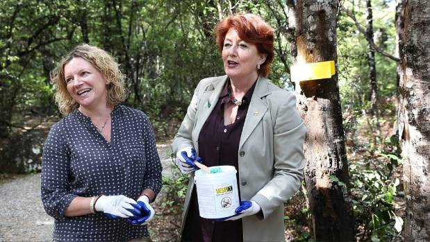 Fairfax Media Nelson regional editor Victoria Guild, left, and Conservation Minister Maggie Barry prepare to apply wasp ...