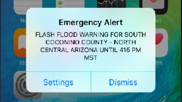 Emergency phone alerts to go live by end of year: Civil