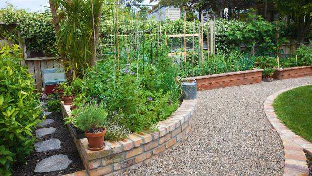 The 'pie garden' filled with herbs and companion pollinators borders a mini citrus orchard of two lemons (Meyer and ...