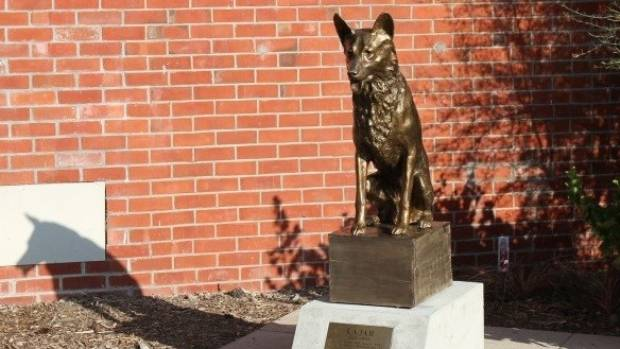 Rajah the wonder dog is memorialised in Methven.