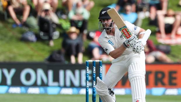 Captain Kane Williamson survived several near misses with a fighting knock to carry New Zealand's hopes.