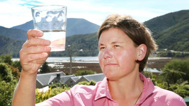 Blenheim Save Our Water rally organiser Frith Chamberlain says the protection of aquifers and fresh water supplies ...