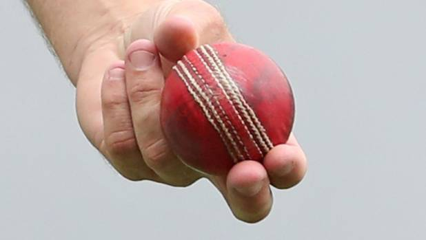 Cricket.
