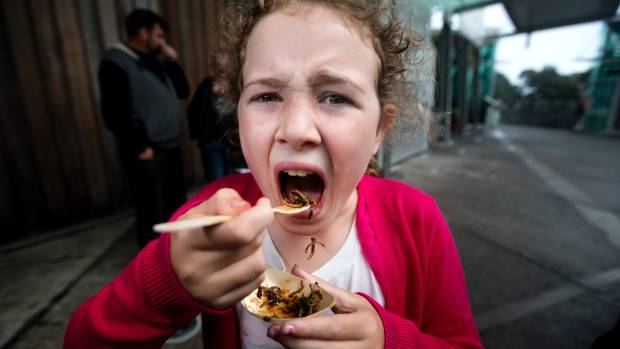 Bella Stainthorpe, 9, thought crickets were very, very crunchy.