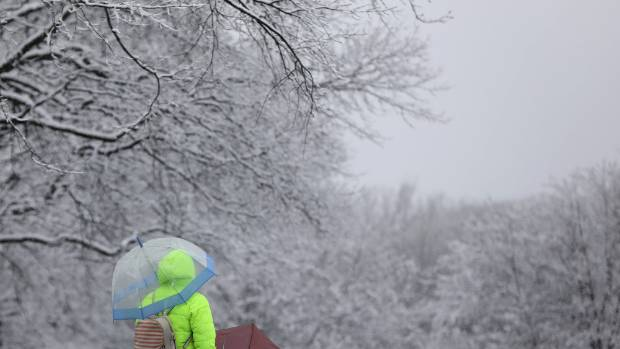 Flights canceled at Charleston airport as blizzard hits the Northeast