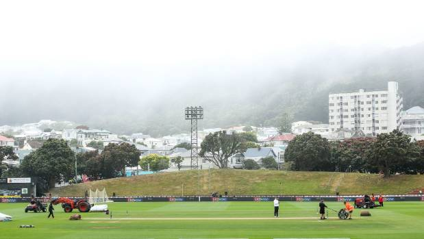 The weather has been dire in Wellington all year.