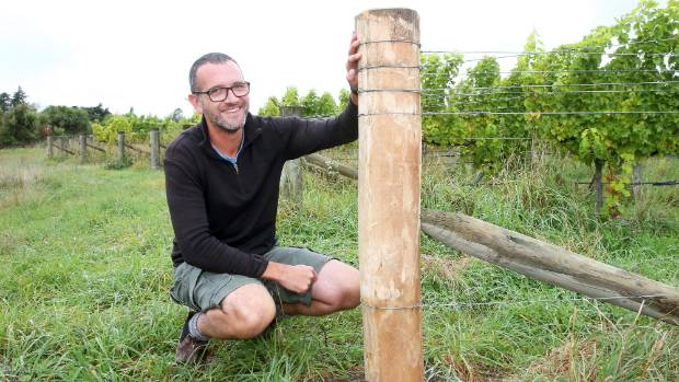 Seresin Estate winemaker Clive Dougall pictured with an all-natural eucalyptus vineyard post, an alternative to posts ...