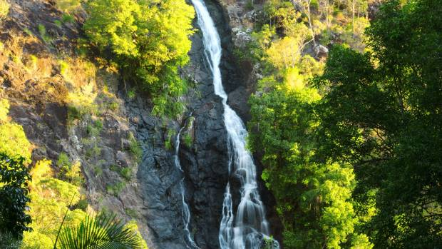 The Kondalilla Falls are a perfect place for a dip.