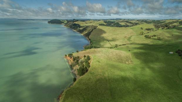 "Waitakere Ranges Local Board member Sandra Coney said she is ""perfectly happy"" that the park has yet to be developed."