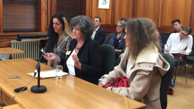 Maggie Wilkinson tells MPs in Parliament's Social Services Committee of her fight to be reunited with her daughter ...
