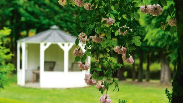 The old fashioned climbing rose 'Cécile Brünner' droops over an archway in the herbaceous border with the summer house ...