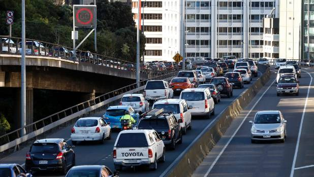 New Zealand has the highest car ownership rate in the OECD, a new report says.