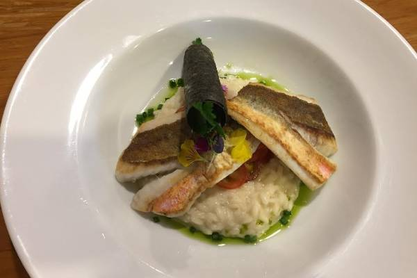 La Patio is serving sheep's cream cheese risotto with panfried gurnard, chive olive oil, dill and a black olive cigar.