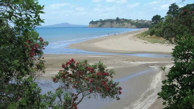 Forest & Bird concern sparked fears for the Long Bay-Okura Marine reserve on the shores of the Okura River.