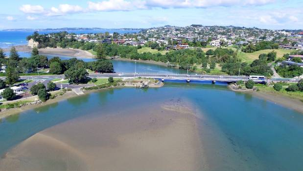 Hibiscus Coast hotspot the Orewa River estuary isn't covered by the new standards.