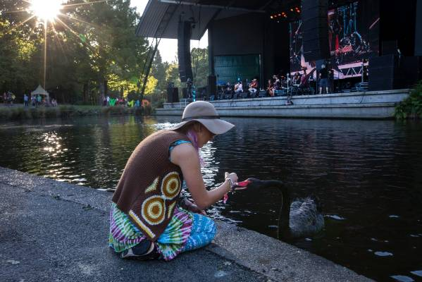 Indiah Holder-Lunn, 18, from Christchurch meets a swan during the opening act of Womad on the Bowl stage.