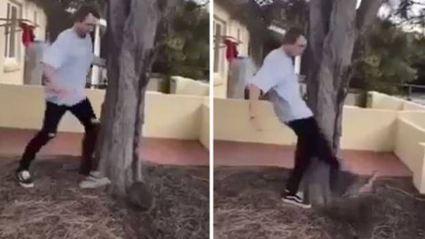 A Perth man was fined A$3000 for kicking a quokka on camera.