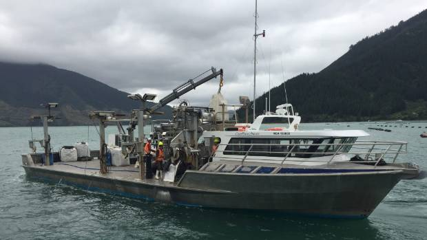 A Clearwater Mussels boat used for re-seeding mussel lines in the Kenepuru Sound. (File photo)
