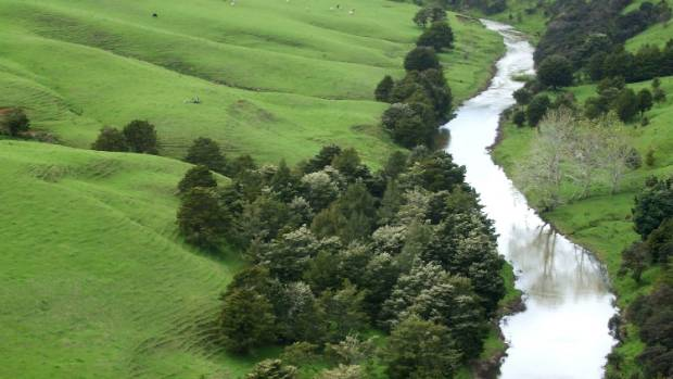 """""""We need to keep stock out of the rivers,"""" Phelan Pirrie said."""