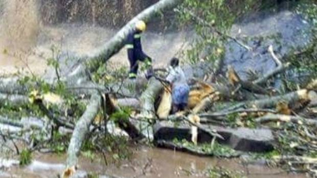 Emergency workers work to clear the fallen tree limbs at the Kintampo waterfalls.