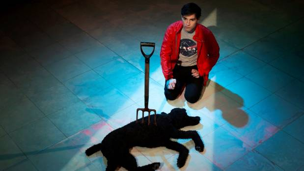 christopher boone hero the curious case of the dog in the night Few new plays have been as enthusiastically received as the curious incident of the dog in the night  christopher boone,  case in point but the curious.