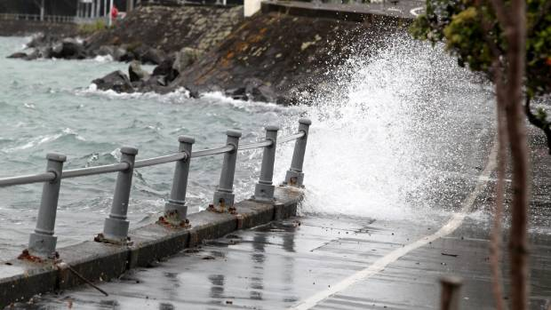 Auckland's 10 kilometre long coastal Tamaki Drive would submerge under rising seas.