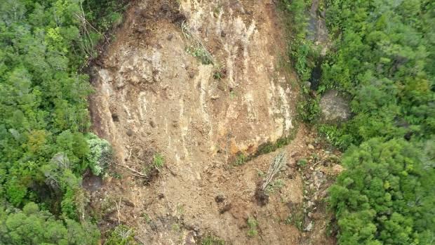 A massive slip has blocked the Billy Goat track up the Kauaeranga Valley.