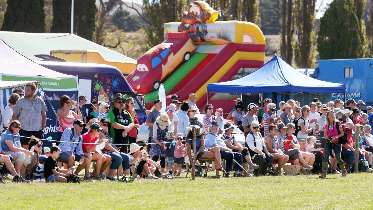 Event guide: What's on in Marlborough | Stuff.co.nz