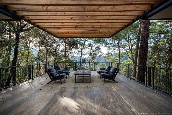 The terrace sits in the tree canopy, almost like a treehouse.