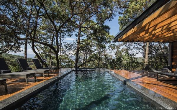 The swimming pool also sits within the tree canopy.