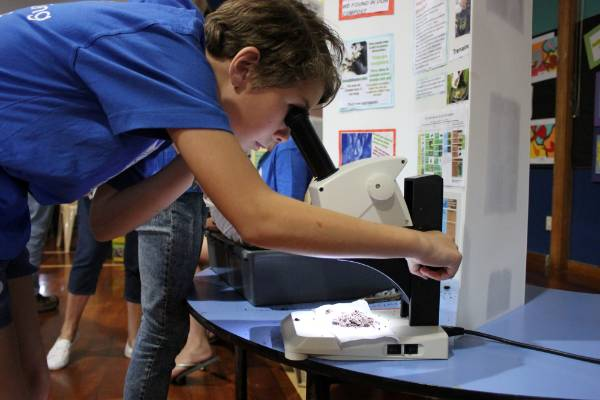 Jordyn Picard, 11, from Matapu School,  investigated invertebrates which help with the composting process.